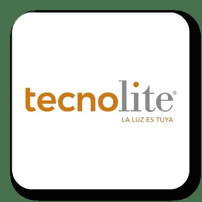 TecnoLite - Migración de ERP a la nube.